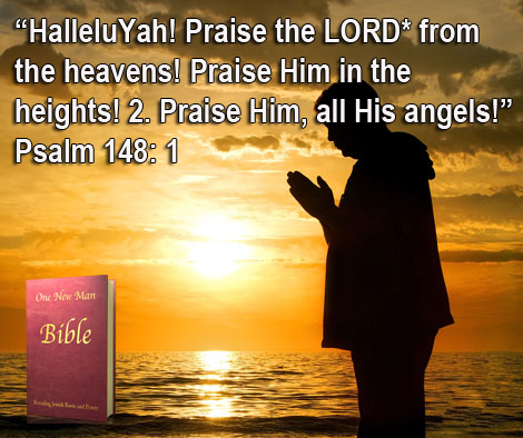 One New Man Daily Word : Psalm 148: 1