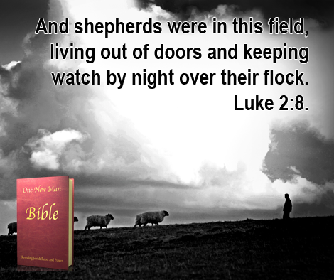 One New Man Daily Word : Luke 2:8