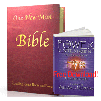 One New Man Bible Leather