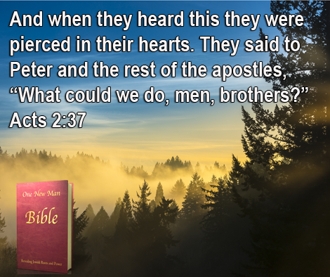 One New Man Daily Word : Acts 2:37