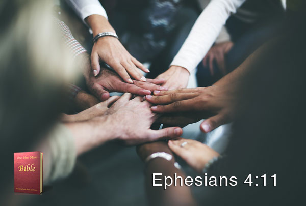 ephesians-4-11