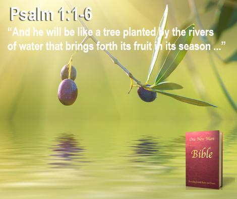 psalm1_1-6
