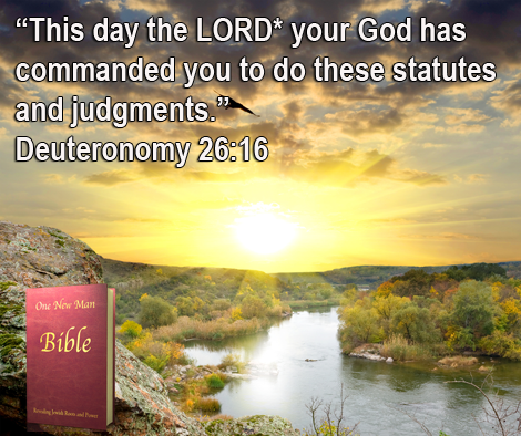 One New Man Daily Word : Deuteronomy 26:16