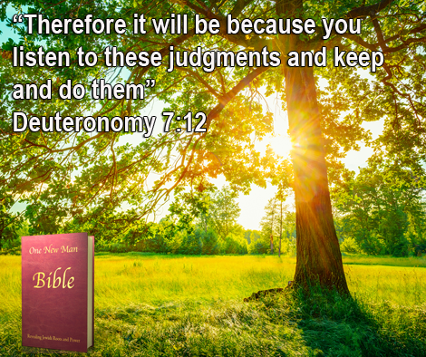 One New Man Daily Word : Deuteronomy 7:12