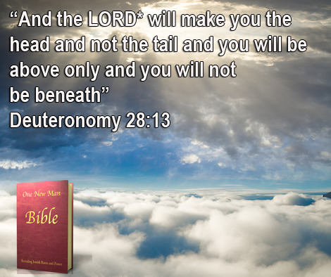 One New Man Daily Word : Deuteronomy 28:13