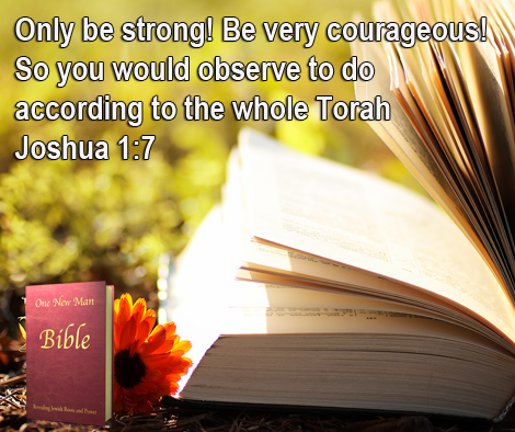 One New Man Daily Word : Joshua 1:7