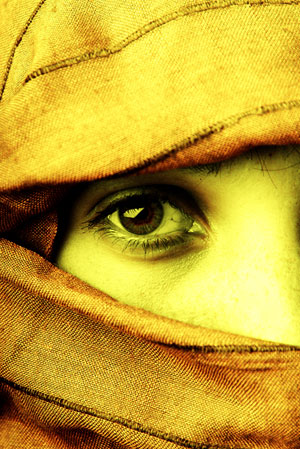 Heroines of the Bible – Abigail
